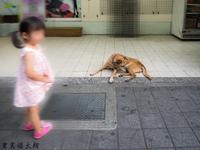 台北_雙城街の...