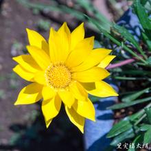 20140424-_4249860.jpg