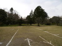 20090049.jpg