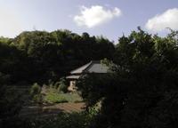 2009d0073.jpg