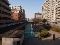 2010030007.jpg