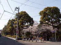 201004009.jpg