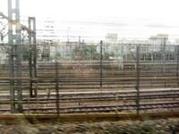 201005021.jpg