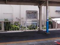 201006087.jpg
