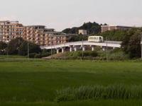 2010070009.jpg