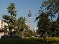 2010090025.jpg