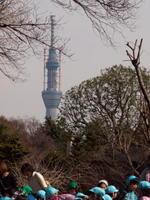2011030002.jpg