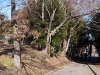 201201_0012.jpg