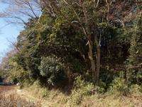 201201_0014.jpg