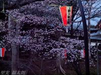 201203_0193.jpg