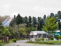 201205_038.jpg